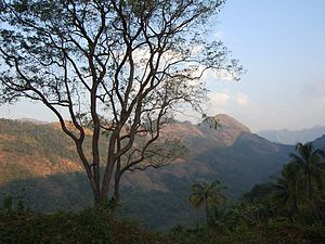 Poonjar - A view from Kaippally, the hilly region of Poonjar