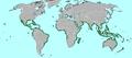 Karte-Biom-Mangrove.png