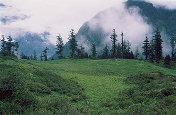 Kedarnath hills india.jpg