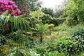 Kingswear, garden at Coleton Fishacre 2 - geograph.org.uk - 805979.jpg