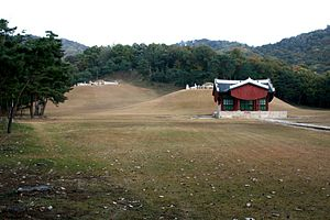 Royal Tombs of the Joseon Dynasty - Seosamneung tombs