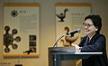 Korea NMK Director Lecture 01 (14431753417).jpg