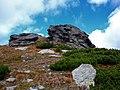 Kráľova hoľa - panoramio (3).jpg