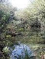 Kurşunlu şelalesi ©Abdullah Kiyga - panoramio.jpg