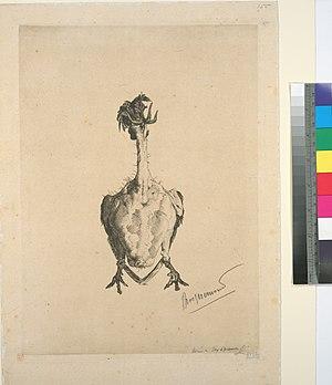 image of La volaille plumée (NYPL b14506647-1128792)