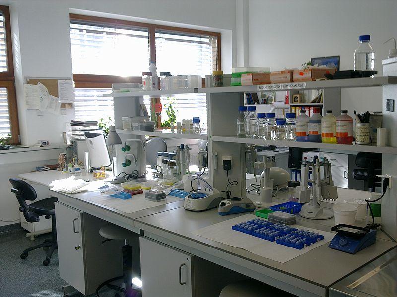 File:Laboratorium-biologia-molekularna.jpg