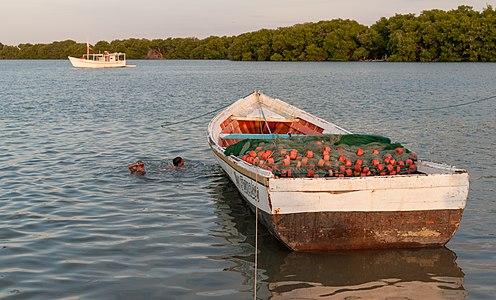 Laguna de Raya