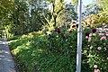 Lakeside Garden (15864272892).jpg