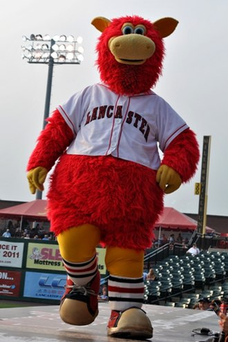 Lancaster Barnstormers - Cylo, the official mascot of the Lancaster Barnstormers