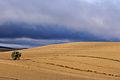 Landscape - Andalucia - 2 (5171927438).jpg