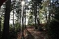 Landschaftschutzgebiet Striegistal (3).jpg