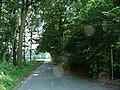 Landschaftsschutzgebiet Waldgebiet bei Neuenkirchen Melle, von der Ecke aus - Datei 1.jpg