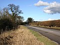 Lane near Charlecote - geograph.org.uk - 1719231.jpg