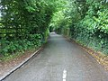 Lane to Henley - geograph.org.uk - 1353084.jpg