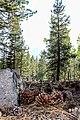 Lassen Volcanic National Park (dc80ae92-ad81-4af1-b665-3e89a7567df2).jpg