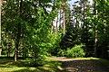 Leśne Arboretum Warmii i Mazur w Kudypach im. Polskiego Towarzystwa Leśnego. - panoramio.jpg