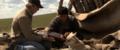 Le dernier loup - Les coulisses - les loups sur le tournage 3.png