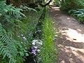 Levada 25 Fontes, Madeira, Portugal, June-July 2011 - panoramio (58).jpg