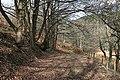 Light and Shade at Aikenway - geograph.org.uk - 707377.jpg