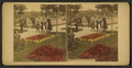 Lincoln Park, Chicago, from Robert N. Dennis collection of stereoscopic views.png