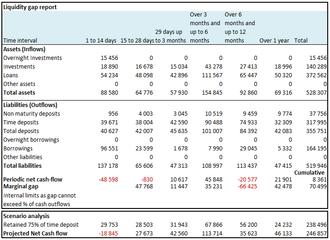 Asset and liability management - Liq gap report2