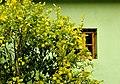 Llanes, ventanas 5.jpg