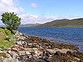 Loch na Cairidh - geograph.org.uk - 117867.jpg
