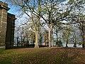 London-Woolwich, St Mary's Gardens 20.jpg