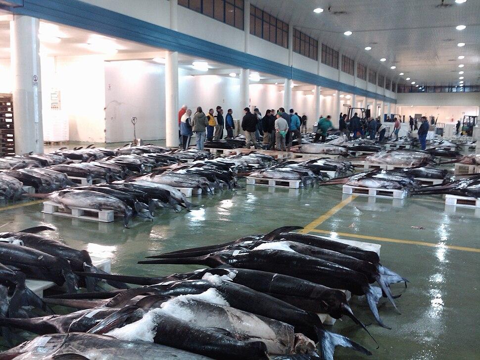 Lonxa do porto pesqueiro de Vigo