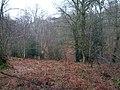 Lower Beeding, UK - panoramio (3).jpg