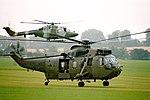 Lynx & Sea King - Middle Wallop (44211675654).jpg