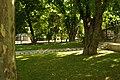 MADRID A.V.U. PASEO DEL PRADO-JARDINES - panoramio (17).jpg
