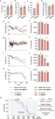 MOTS-c regulates aging metabolism and healthspan.webp