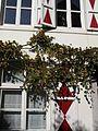 Maastricht 691 (8325578806).jpg