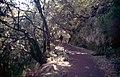 Madeira-24-Levada-2000-gje.jpg