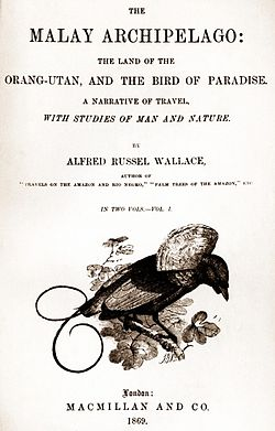 Malay Archipelago title page.jpg