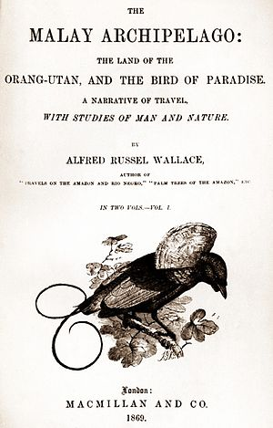 The Malay Archipelago - Title page of first edition