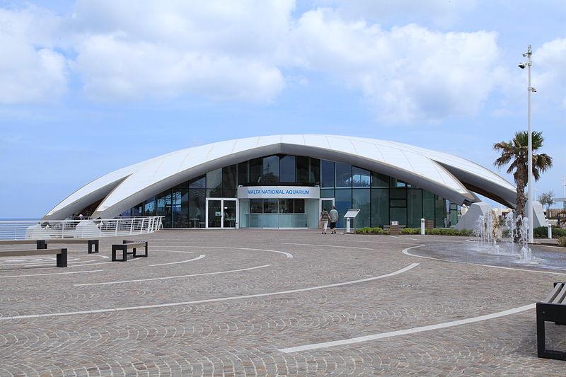 File:Malta - St. Pauls Bay - Triq it-Trunciera - National Aquarium 03 ...