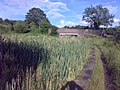 Manchester Bolton and Bury canal Stoneclough.jpg