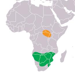 Elterjedési területe, a zöld a déli alfajé, a narancssárga az északi alfajé