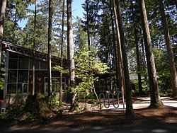 Maple Valley, WA - library 01.jpg