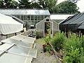 Margaret C. Ferguson Greenhouses - Wellesley College - DSC09766.JPG