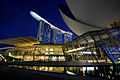 Marina Bay Sands at night (1).jpg