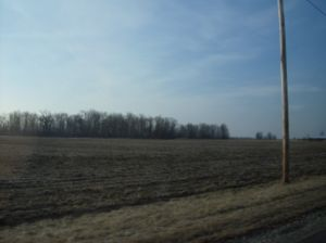 Marseilles Township, Wyandot County, Ohio - Fields and small woods near the village of Marseilles