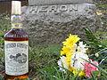 Martin Wilkes Heron Grave.jpg