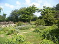 Martinvast - Jardin (2).jpg