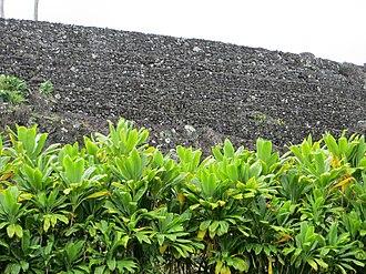 Kahanu Garden - Image: Maui Piilanihale Heiau walltiers