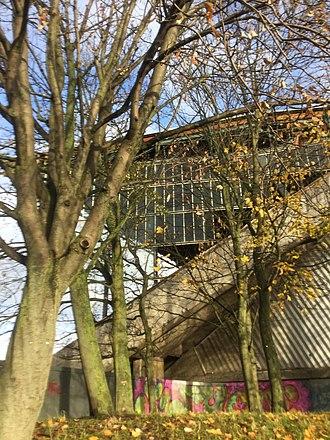 Meadowbank Stadium - Threatened trees outside at Edinburgh's dilapidated Meadowbank Stadium in November 2018