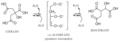 Mecanismo ACO-mitocondrial.png