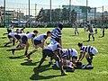 Meiji University vs. Yale University Rugby International Exchange Match Ⅲ.jpg
